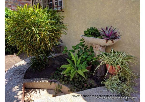Varieties of plants that adorn the garden