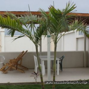 Covered lounge area near the pool