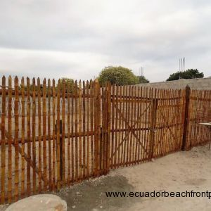 Empty lot.   2 sides fenced in cement block wall.  2 sides bamboo