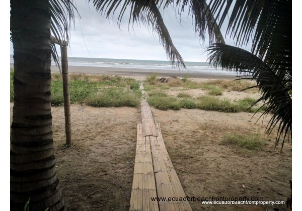 Bamboo pathway to the beach