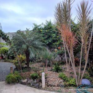 Sideyard landscaping and walkway toward the beach