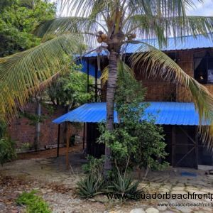 The property has a mature coconut palm, sour orange tree and a mango tree