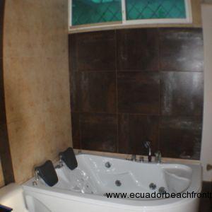 Master bath jacuzzi bathtub