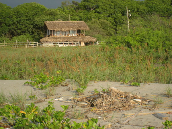 Ecuador Beachfront Real Estate