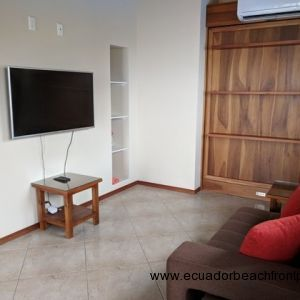 2nd bedroom is outfitted with a murphy bed, flat screen tv, loveseat