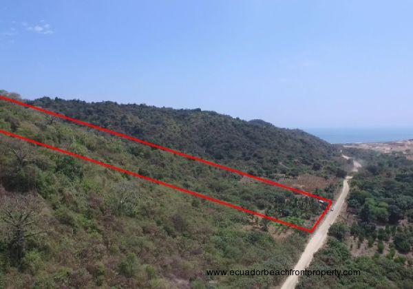 Pajonal Bahia Land1