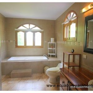 Large master bath with walk-in shower and bathtub