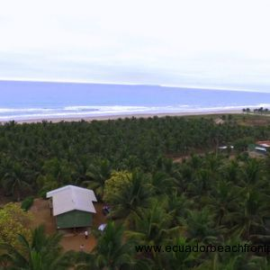 Price Dropped by $500,000!!  - 44.5 Acre Beachfront Coconut Plantation -
