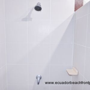 Master ensuite with walk-in shower