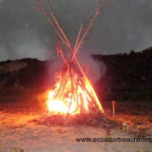 Group bonfire - Beach clean-up