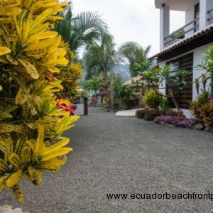 Lots of color and foliage in this tropical paradise.