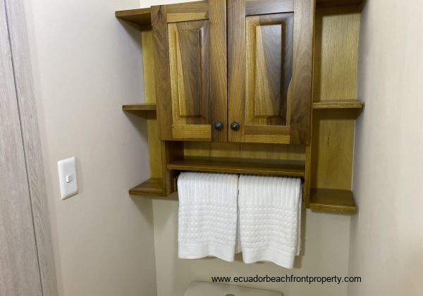 Custom built cabinet in the social bathroom.