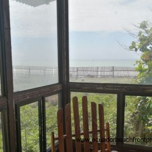 View from the sun room.
